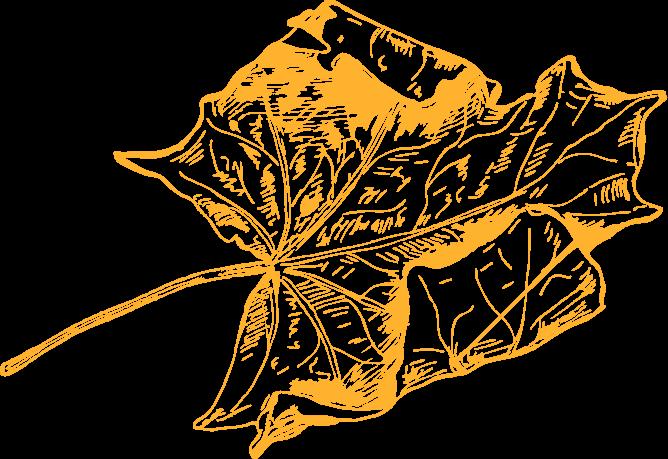 Spakarps plantskola